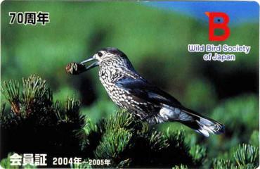 Wbsj2004